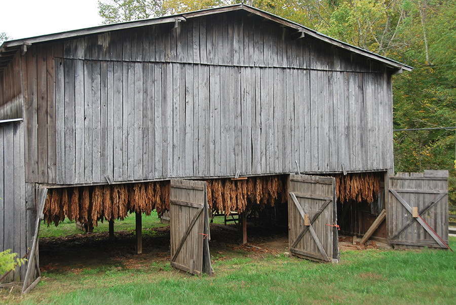 Red Hill Farms Tobacco Barn
